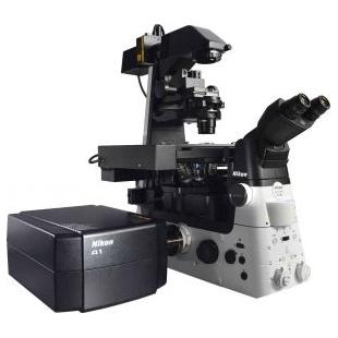 尼康共聚焦显微镜 A1 HD25
